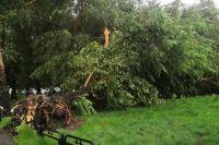 В республике оборваны линии электропередач, повалены деревья, повреждены здания.