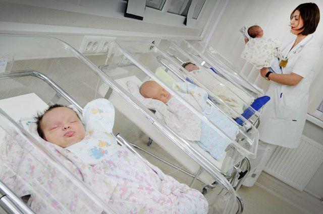 Все новорождённые – мальчики.