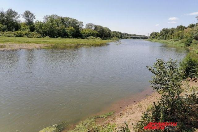 Специалисты опасаются, что рано или поздно обмеление реки может обернуться экологической катастрофой.