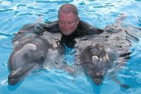 Учёный давно изучает дельфинов и знает, что после встречи с человеком они тоже начинают испытывать к людям определенный интерес.