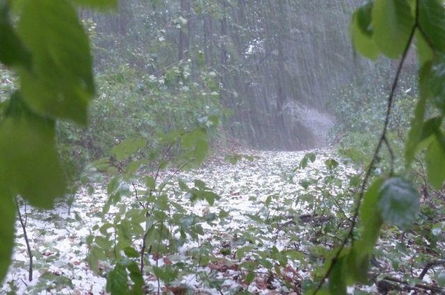 Ачинские дороги не выдерживают дождей, микрорайоны и пригороды ушли под воду.
