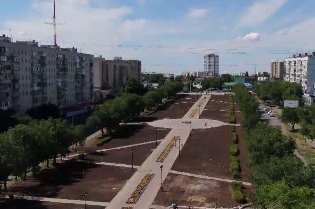 В сквере Лебедева и Сираева посадят больше деревьев, чем вырубили.