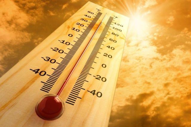 Абсолютный температурный рекорд установлен в Ростове-на-Дону