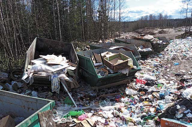 Строительство новой площадки для разгрузки и временного хранения ТБО поможет решить экологическую проблему в Троицко-Печорске.