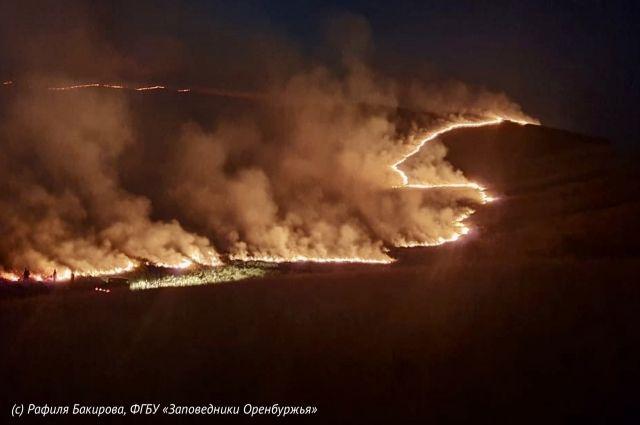 Заповедник «Оренбургский» спасен от степного пожара.