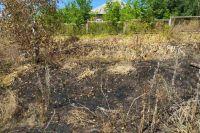 В Харьковской области во время сжигания сухостоя погибла пенсионерка