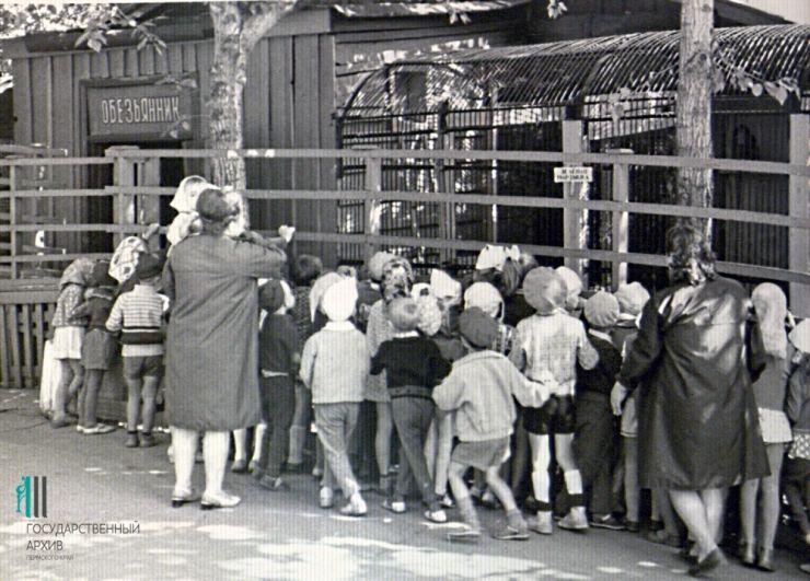Дети на экскурсии в пермском зоосаде.
