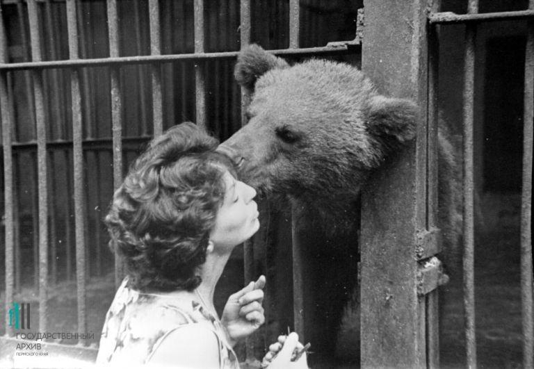 Поцелуй медведя, 1972 год.