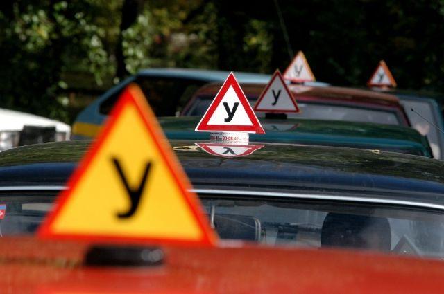 Проверка на дорогах региона — вынужденная мера после 25 ДТП, зарегистрированных за полгода.