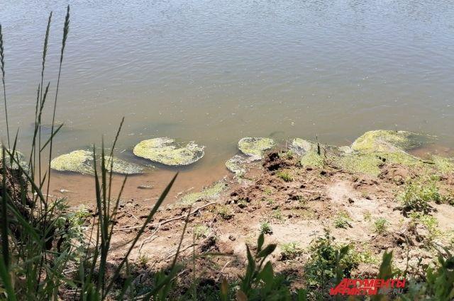 В Урале в Беляевском районе утонул подросток.