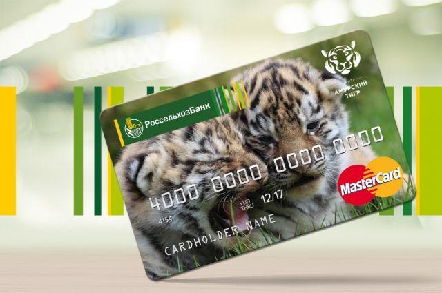 По итогам первого полугодия РСХБ перечислил более 11 млн. руб. на проекты по защите амурского тигра.