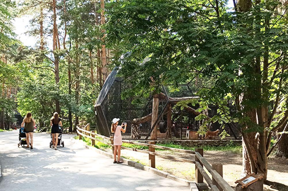 Одна из главных радостей горожан - открывшийся после карантина зоопарк.