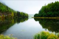 В Троицко-Печорском районе из реки Печора выловили тело мужчины.