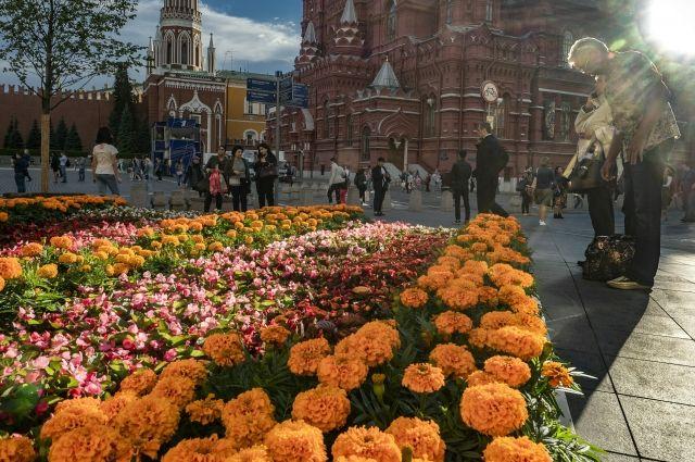 Депутат Мосгордумы Бускин рассказал о новой форме озеленения в Москве