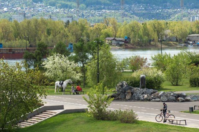 От красноярцев зависит, появится ли в городе новый сквер или парк.