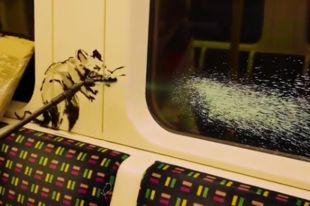 Что за новое граффити с крысами нарисовал Бэнкси?