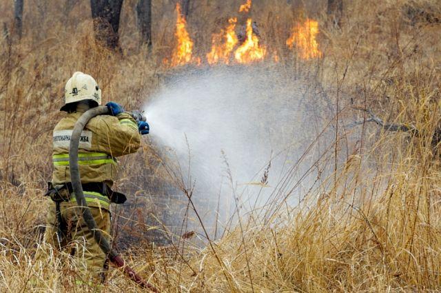 Всего в регионе действуют 24 природных пожара.