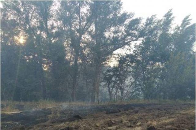 Лесной пожар в Ташлинском районе продолжает тушить авиация.