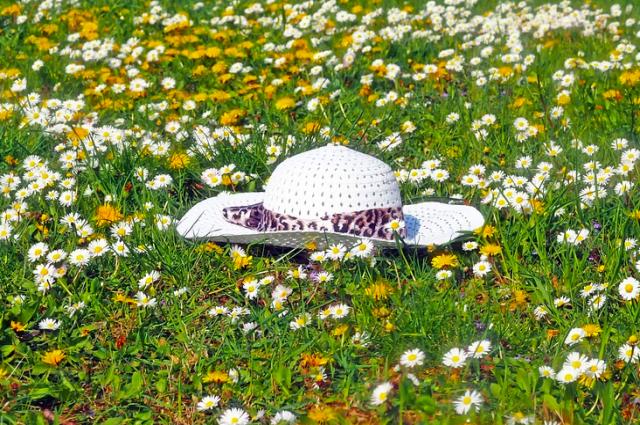 В Тюмени прогнозируют дожди и спад жары
