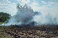 Площадь возгорания составляет около 300 гектаров.