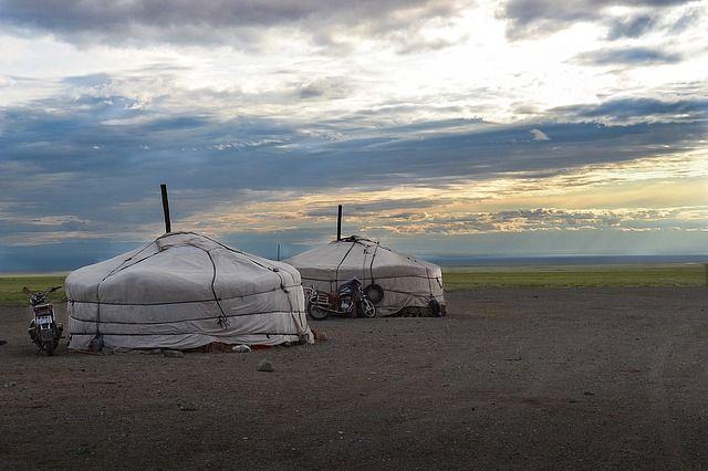 Монголия стала природным очагом бубонной чумы.