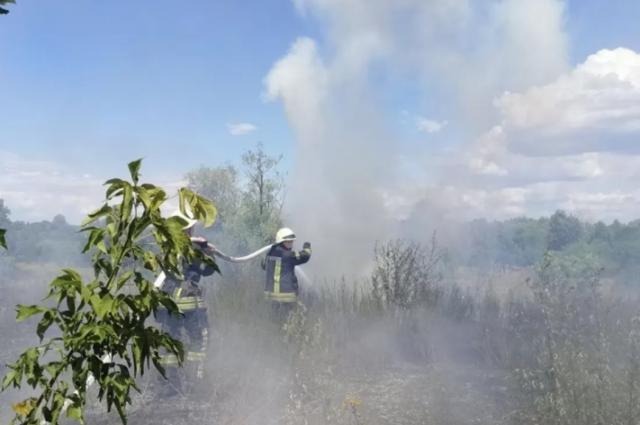 Поджег сухую траву и мусор: в Киеве мужчина устроил пожар