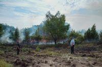 Из-за жары в Тюменской области растет количество лесных пожаров