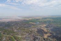 В Ташлинском районе локализован крупный лесной пожар.