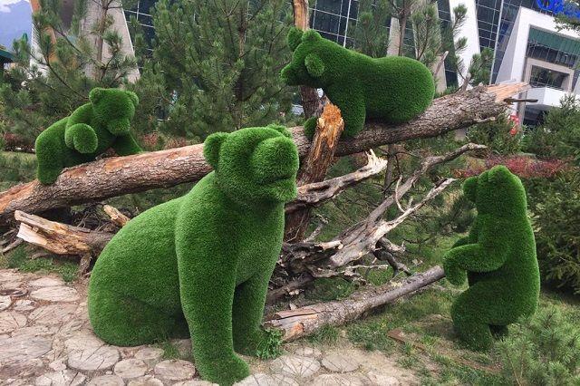 В Железноводске появятся зелёные медведи