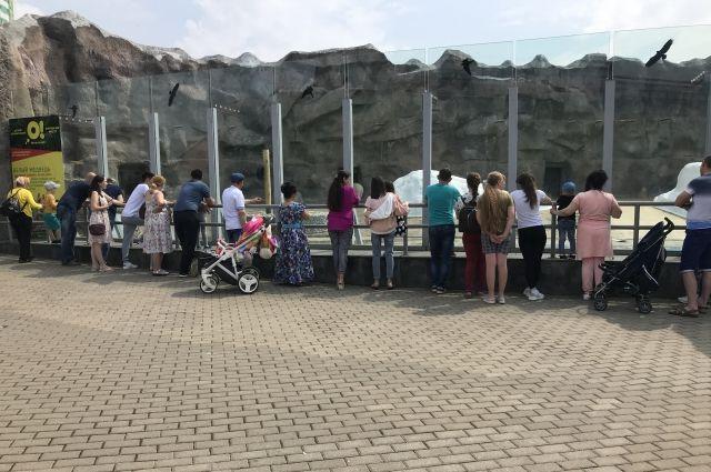 В Ижевске состоится «Ночь в зоопарке»