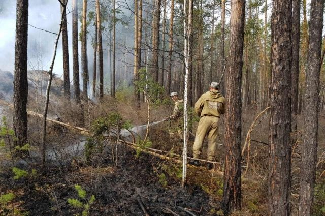 Для сравнения, в 2019 году на эту дату в лесах региона зарегистрировано 115 пожаров площадью 2138,98 га