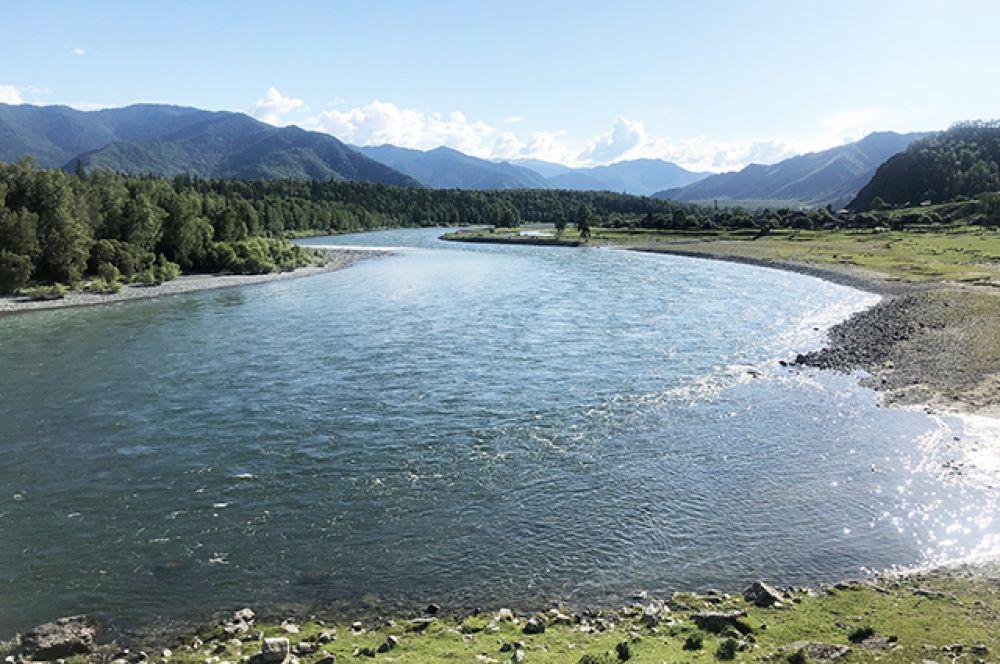 Но особенно любим Алтай в солнечную погоду, когда реки сияют в лучах, а на горизонте горы сливаются с небом. А на фото воедино сливаются Бия и Катунь - легендарные реки Алтая.
