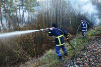В Новоайдарском районе из-за обстрелов загорелся лес