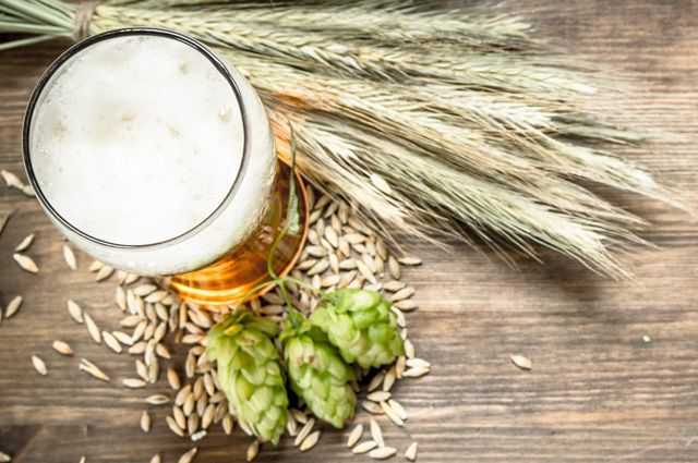Как пиво может помочь поддержать красоту? Необычные способы
