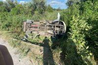 В Днепропетровской области автобус слетел в кювет: 15 человек в больнице