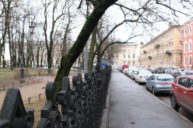 Сквер на Капитанской улице в Петербурге получил название