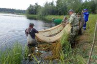 АО «Транснефть – Сибирь» выпустило мальков муксуна в реку Обь