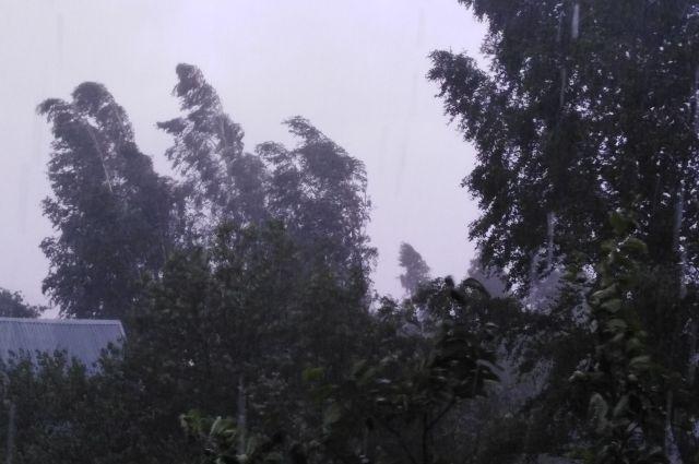 Ураганный ветер повалил вышку сотового оператора в Соль-Илецке.