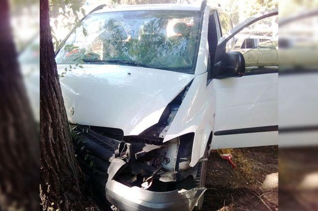 В Днепре микроавтобус врезался в дерево: в больницу попали шесть человек