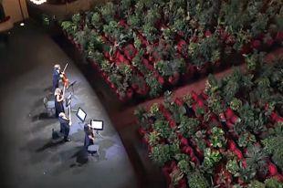 Что за концерт для растений дал струнный квартет UceLi в театре «Лисео»?