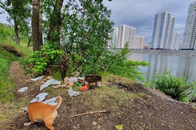 Горожане пользуются островом Отдыха, но не убирают за собой мусор.