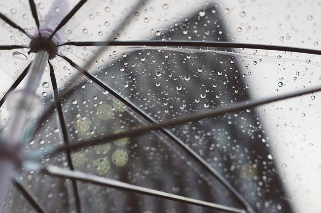 В Тюмени ожидается дождливая неделя