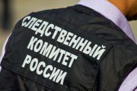 Председатель СК России Александр Бастрыкин поручил доложить ему о ситуации с проблемным домом.