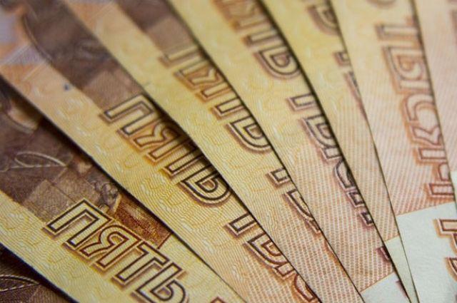 Информационная система для профилактики коррупции появится в Петербурге