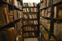 Многим учреждениям культуры пришлось осваивать информационное пространство.