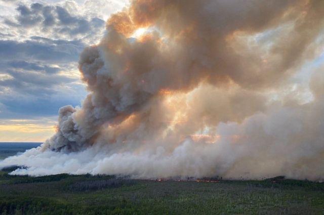 Сегодня власти Екатеринбурга заявили, что дымка в город пришла с территории автономного округа.