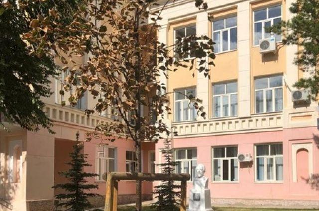 В центре Оренбурга высадят новые липы взамен пострадавших от жары старых.