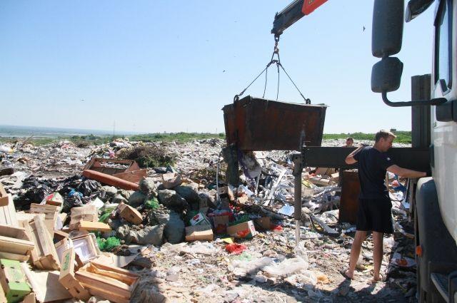 Полигоны заполнены на 90 процентов: Закарпатью грозит мусорный коллапс