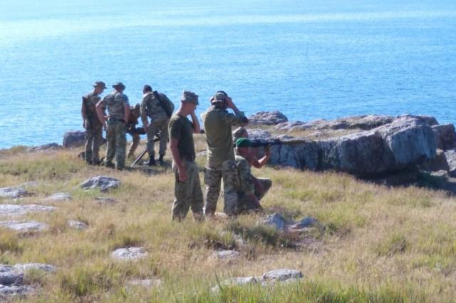 Пограничники провели учебные стрельбы на острове Змеиный