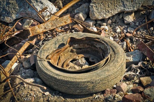 Многим все равно, куда вываливать мусор, как правило, его везут в лес.